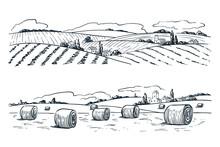 Farming Fields Landscape, Vect...
