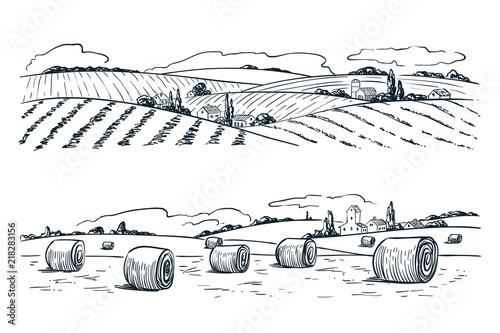 Fotomural Farming fields landscape, vector sketch illustration