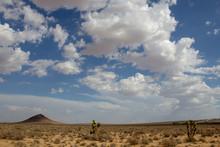 Mojave, Mojave Desert, Mojave Desert California