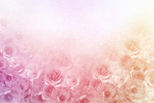 Beautiful Roses Flower Border In Soft Vintage Tone Color With Glitter Background For Valentine Or Wedding Card