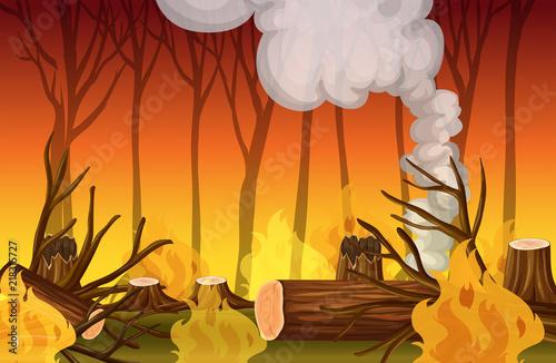 Photo sur Toile Jeunes enfants A forest wildfire disaster