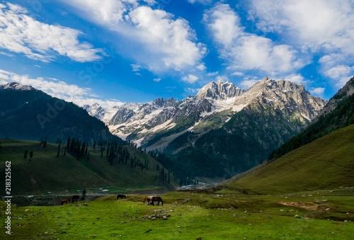 Fényképezés  Beautiful mountain view of Sonamarg, Jammu and Kashmir state, India