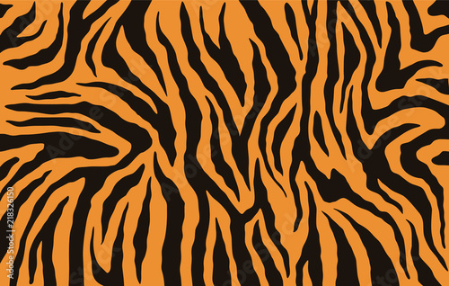 Fototapeta Texture of bengal tiger fur, orange stripes pattern. Animal skin print. Safari background. Vector obraz