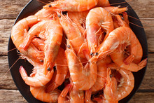 Boiled Large Shrimp Close-up On A Plate. Horizontal Top View