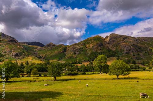 Staande foto Lavendel Lake District in Cumbria