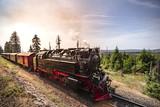 Steam locomotive driving through beautiful nature