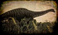 Huge Diplodocus In Wetland, 3d...