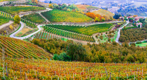 Amazing vast fields of vineyards in autumn colors in Piedmont. NOrthen Italy