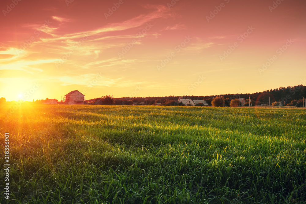 Fototapety, obrazy: Rural landscape with beautiful gradient evening sky at sunset. Green field and village on horizon