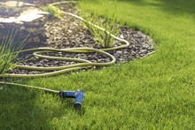 Rubber Garden Hose Laying On L...