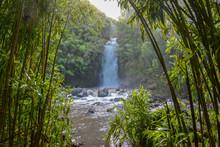 Tropical Waterfall On The Isla...