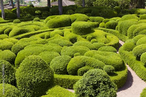 Gardens of Marqueyssac, Vezac, Dordogne, Nouevelle Aquitaine, France Canvas Print