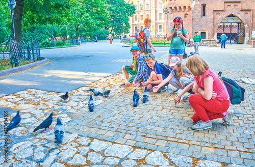 Kids and doves, Krakow, Poland