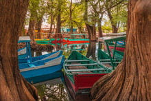 Colorful Canoes At The Camecua...