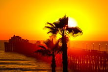 Oceanside Sunset View