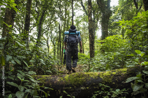 Fotografía  The man hiker with backpack walking in the forest