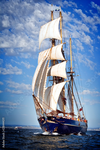 Deurstickers Schip sailing ship