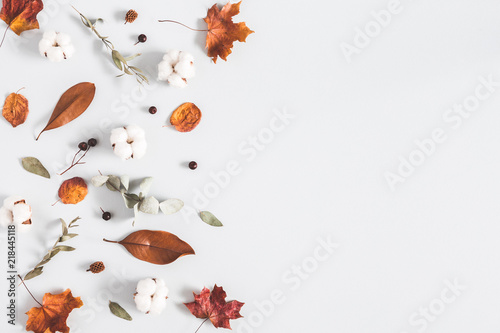 Obraz Autumn composition. Frame made of eucalyptus branches, cotton flowers, dried leaves on pastel gray background. Autumn, fall concept. Flat lay, top view, copy space - fototapety do salonu