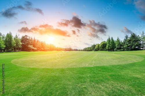 Wall Murals Pistachio Green grass field and forest scenery at sunrise