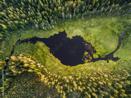 widok-z-lotu-ptaka-las-i-maly-jezioro-lub-staw-w-borealnym-aka-tajgi-lesie-w-finlandia