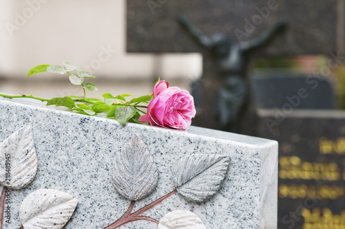 Foto Churchyard, Friedhof, Grab, Allerheiligen, Allerseelen, Rose, Textraum, copy spa