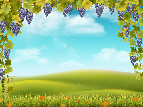 Tuinposter Lichtblauw Bunches of grapes like frame on the background of the rural landscape with valley, hills and sky. Vector illustration about the harvest and winemaking.