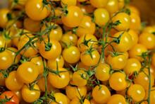 Yellow Ripe Tomatoes