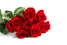Beautiful Red Rose Flowers On ...