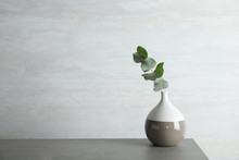 Vase With Eucalyptus Branch Wi...