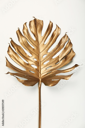 Painted tropical Monstera leaf on white background, top view Wallpaper Mural
