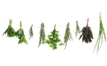 Bunches Of Rosemary And Other Herbs Hanging Against White Background