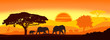 canvas print picture - Wild animals silhouette; family of elephants, with giraffes and rhinos.
