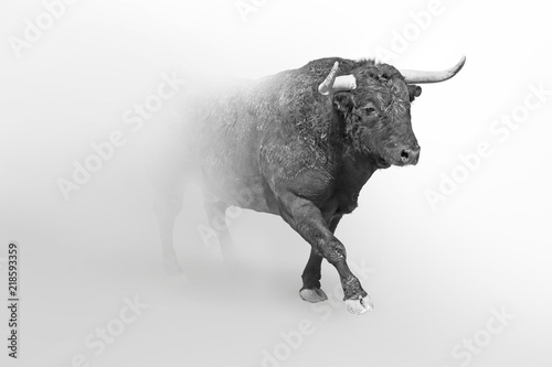 In de dag Buffel Bull or taurus european wildlife animal art collection grayscale white edition