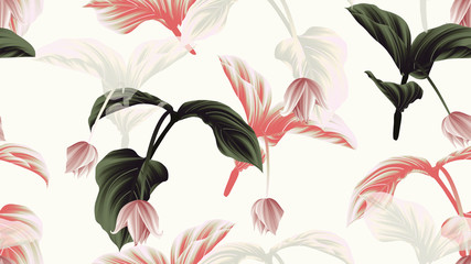 FototapetaSeamless pattern, Medinilla magnifica flowers with leaves on light grey background, green, red and white tones