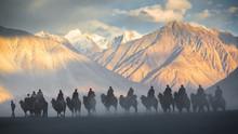 Caravan Of People Riding On Camels In Dusty Nubra Valley