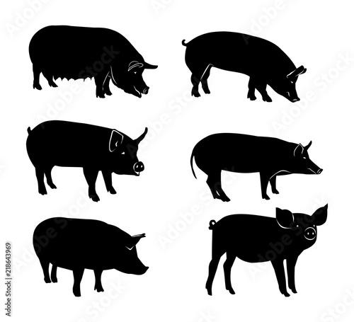 Fotografia Set of black silhouettes of pig