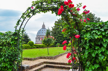 St. Peter's Cathedral Dome And Vatican Gardens, Rome, Italy