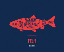 Fish Shop. Diagrams For The Fi...