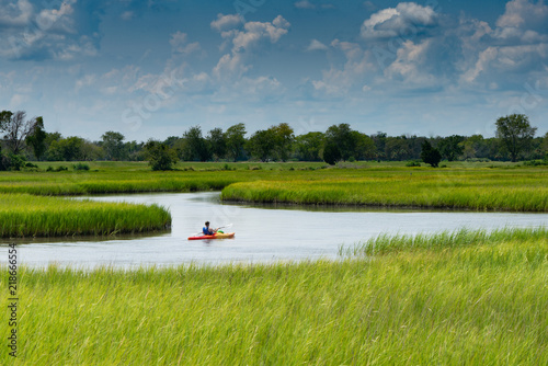 Valokuva  Kayaker in the Marshland