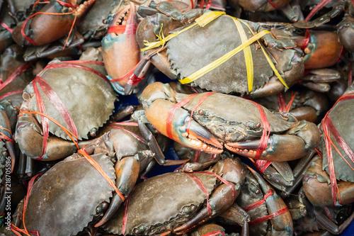 Fresh serrated mud crabs prepare to sell on street food market, Giant Mud Crabs, SERRATED MUD CRAB, Scylla serrata