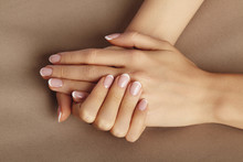 Young Female Palm. Beautiful Glamour Manicure. French Style. Nail Polish. Care About Hands And Nails, Clean Skin