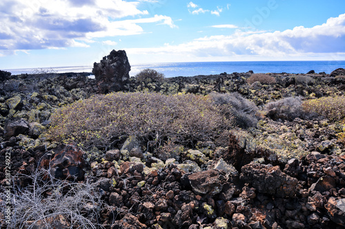 Poster Lavendel Landscape in Tropical Volcanic Canary Islands Spain