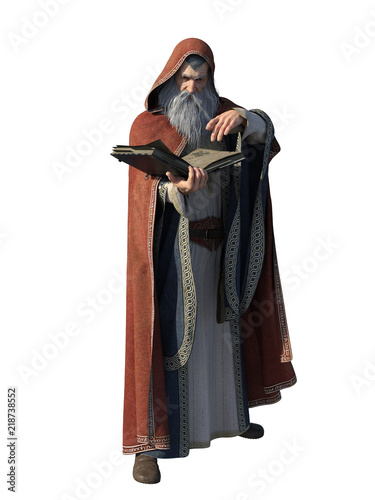 Wizard with Spell Book, Isolated Wallpaper Mural