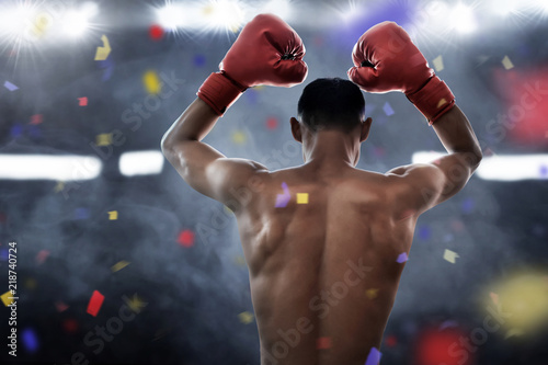 Boxer winning the match Wallpaper Mural