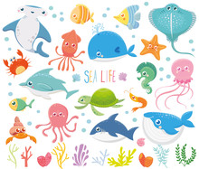 Set With Funny Sea Animals. Ma...
