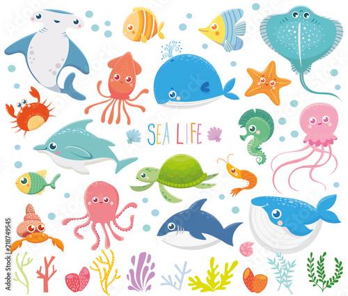 Fototapeta premium Zestaw z zabawnymi zwierzętami morskimi. Życie morskie. Dzika przyroda oceanu. Śliczna ilustracja. Kolekcja wektor