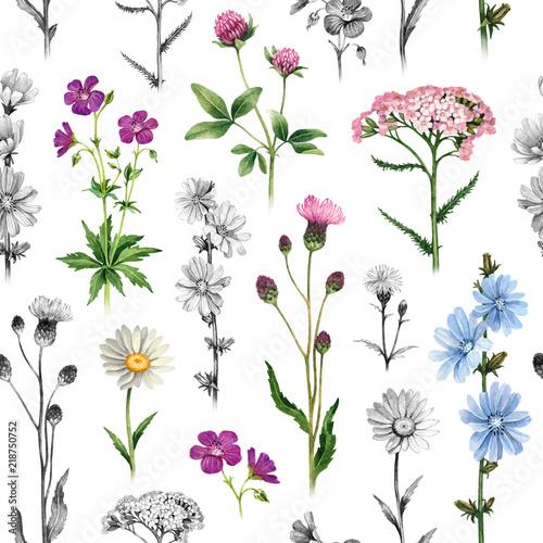 Tapety Prowansalskie  akwarela-ilustracje-dzikich-kwiatow-jednolity-wzor