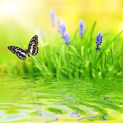 Naklejka Na szybę Green background, beautiful butterfly, blue flower