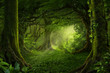 Leinwandbild Motiv Asian tropical rainforest