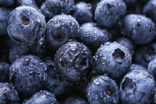 Fresh Ripe Blueberries With Drops Of Water, Closeup
